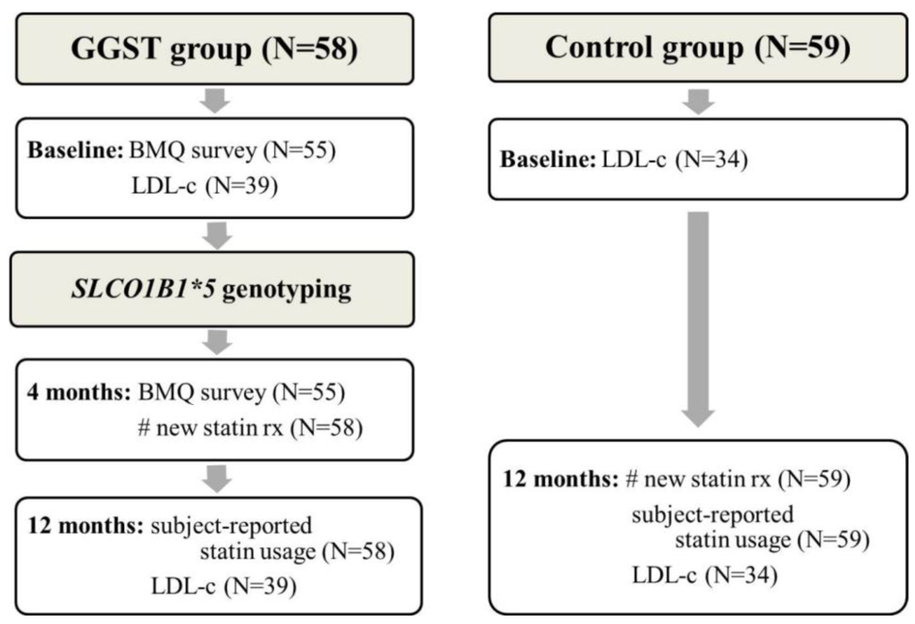 JPM | Free Full-Text | Genetically Guided Statin Therapy on Statin ...