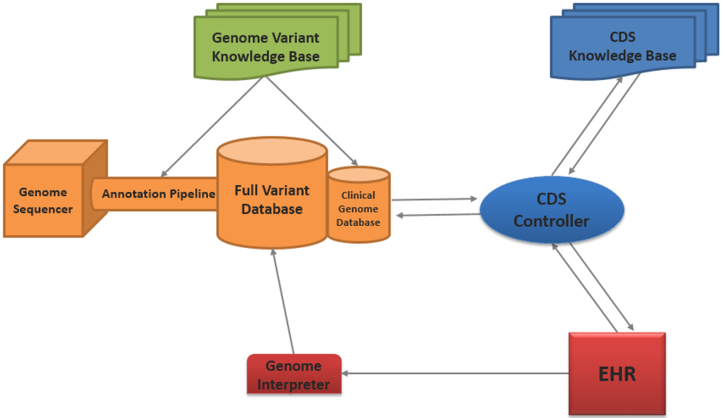 Genome Sequencing Pipeline For Whole Genome Sequence