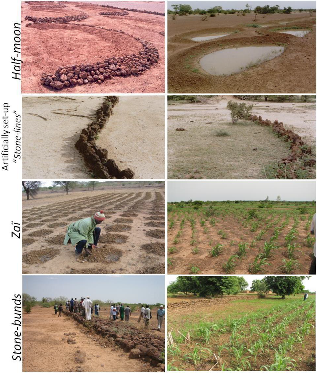 Land free full text the re greening of the sahel for Soil and water conservation
