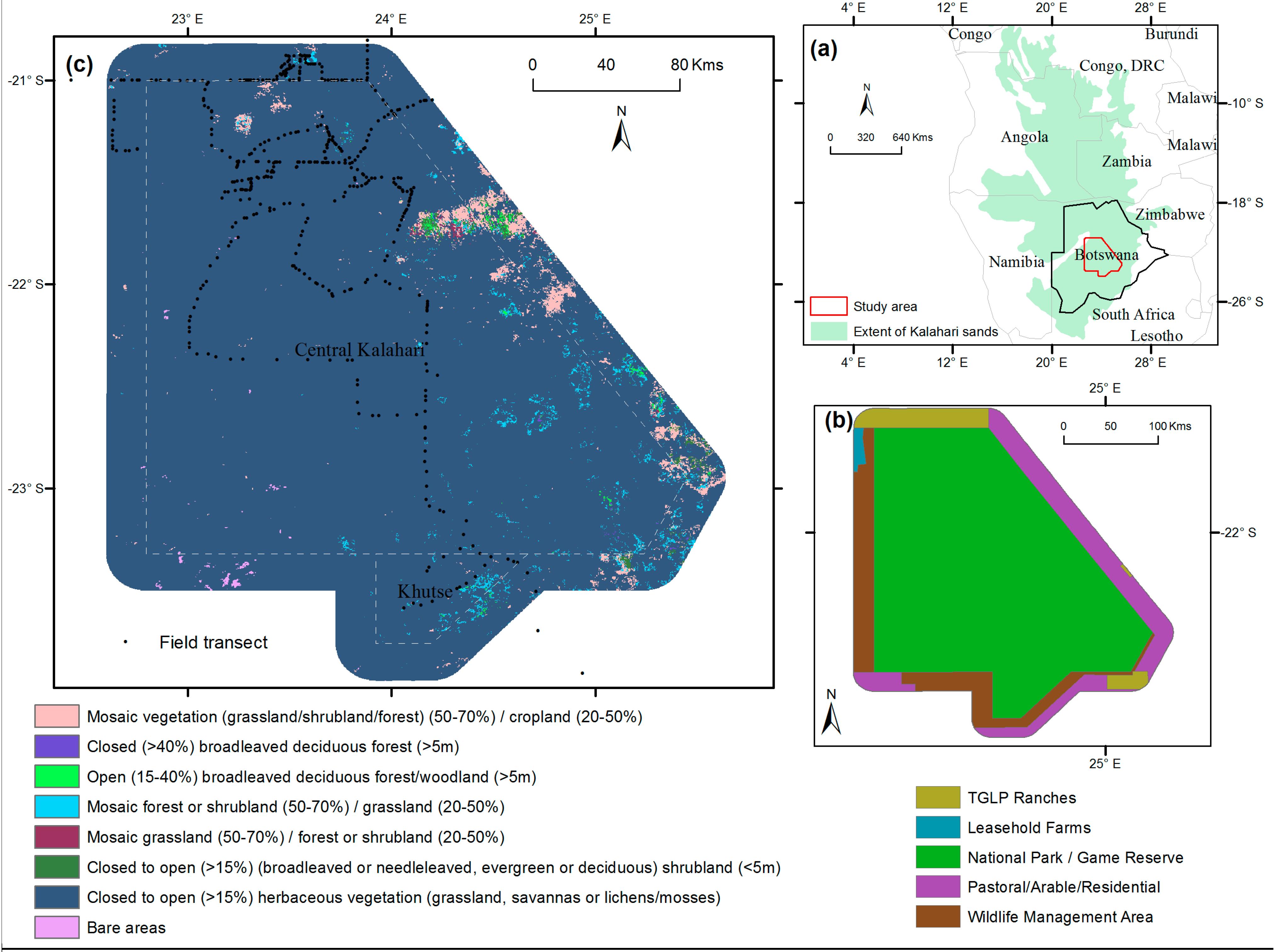 savanna ecosystem case study