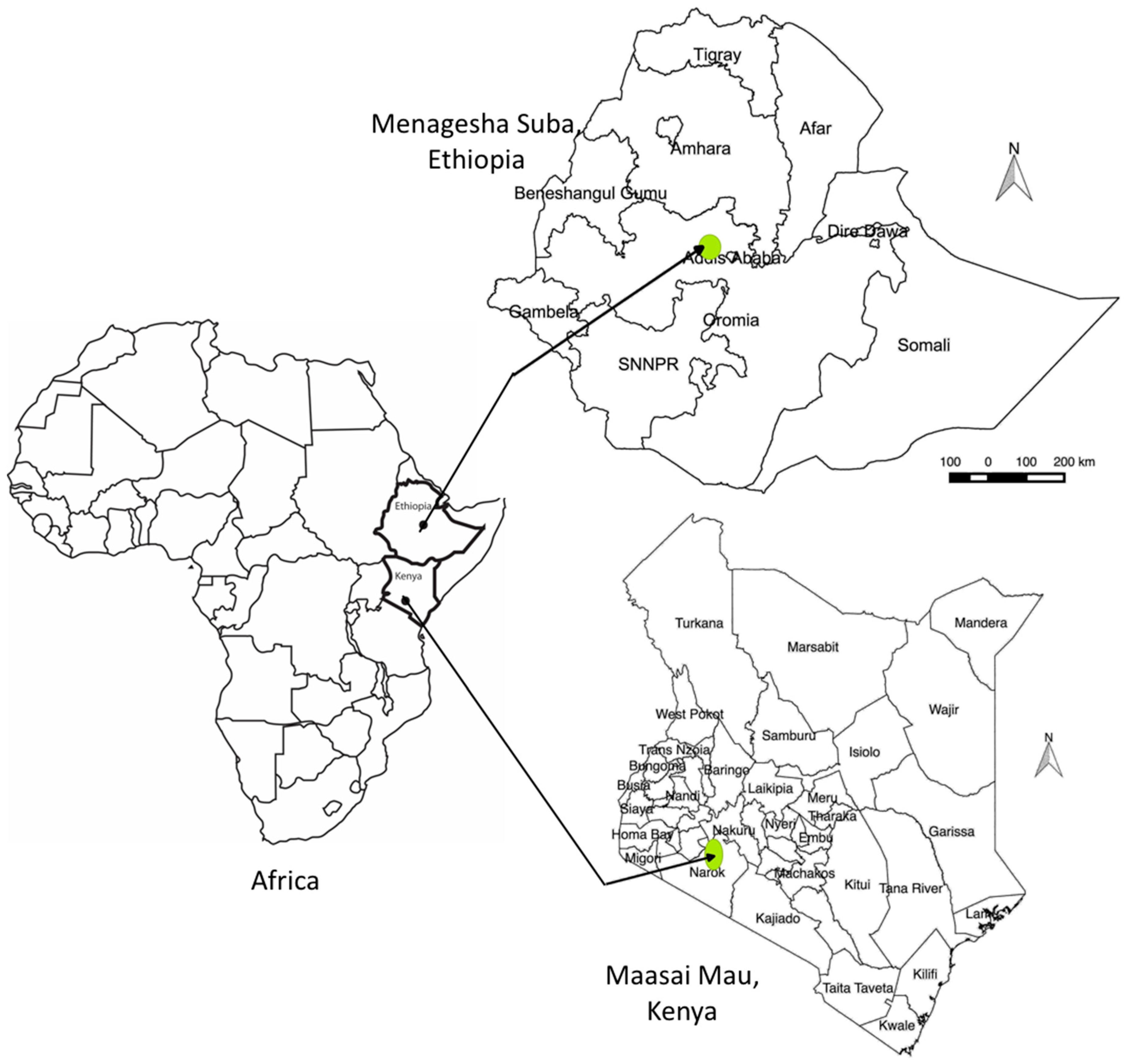 land free full text deforestation and forest degradation as an  land 08 00026 g002