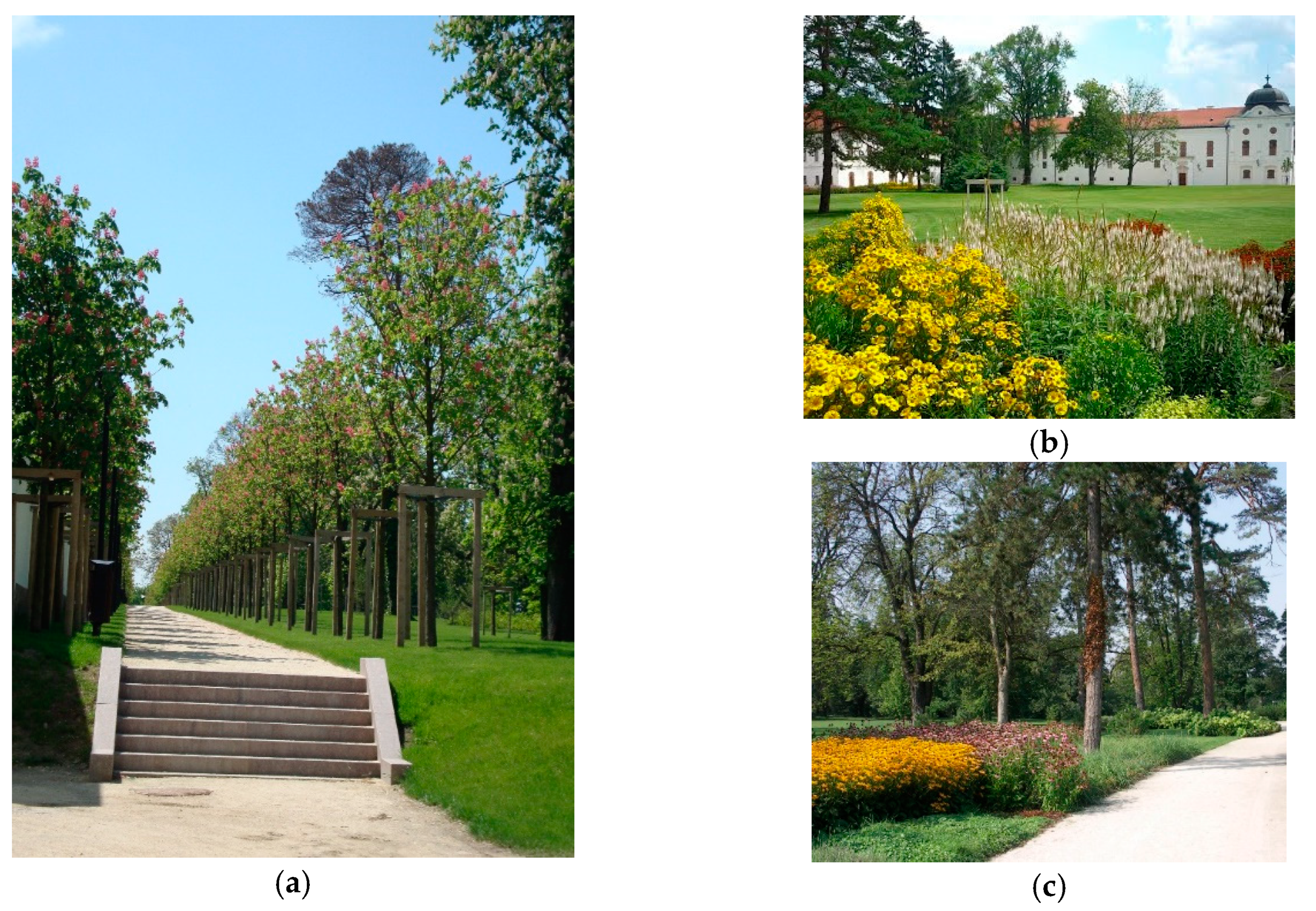 34 ideas for privacy in the garden with a decorative.htm land free full text research based design approaches in  research based design approaches