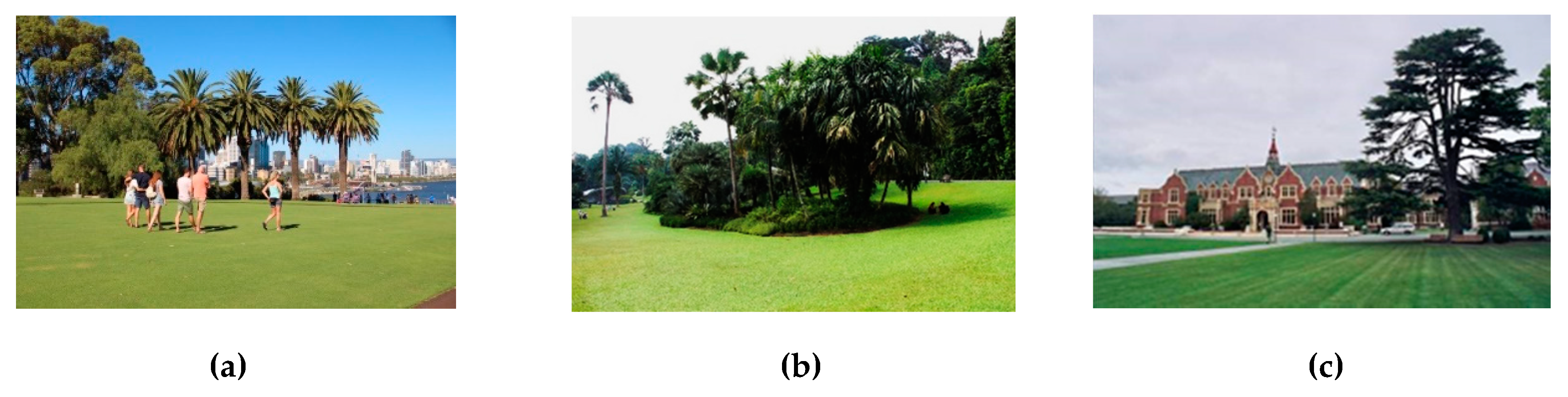 34 ideas for privacy in the garden with a decorative.htm land free full text lawns in cities from a globalised urban  land free full text lawns in cities