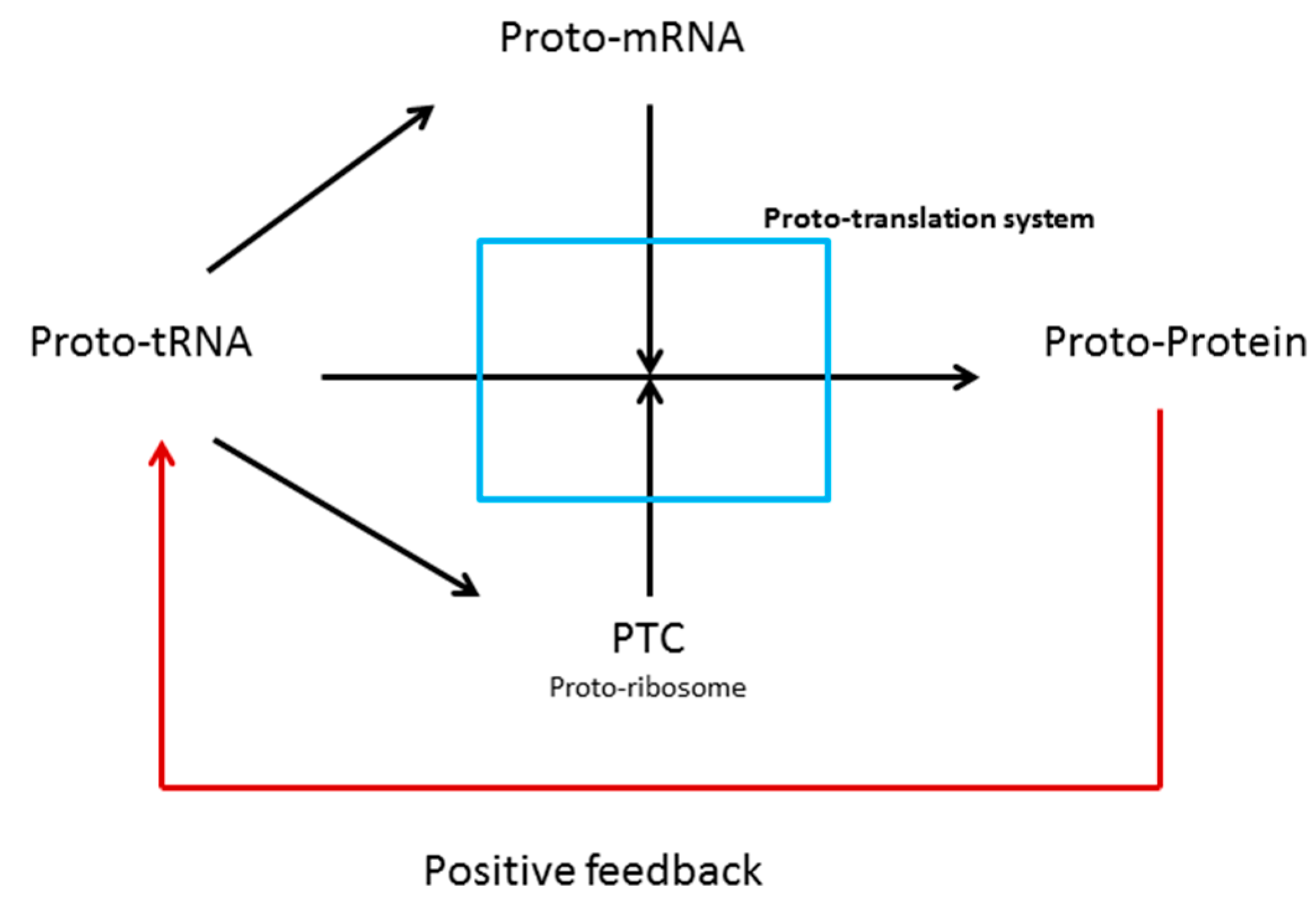 Life | Free Full-Text | tRNA Core Hypothesis for the