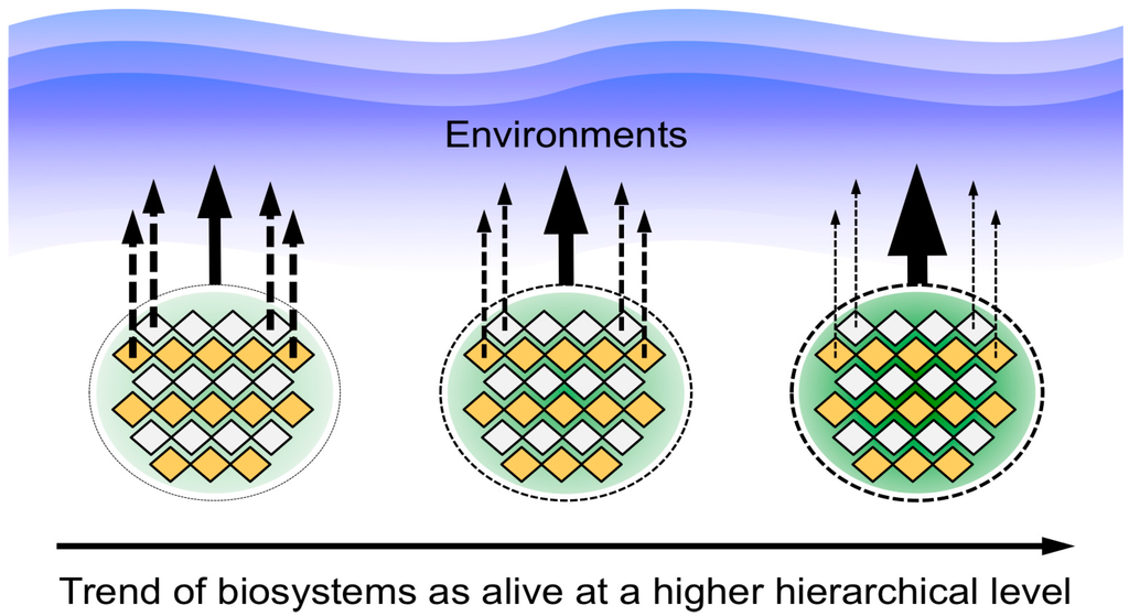 Chemical evolution hypothesis essay