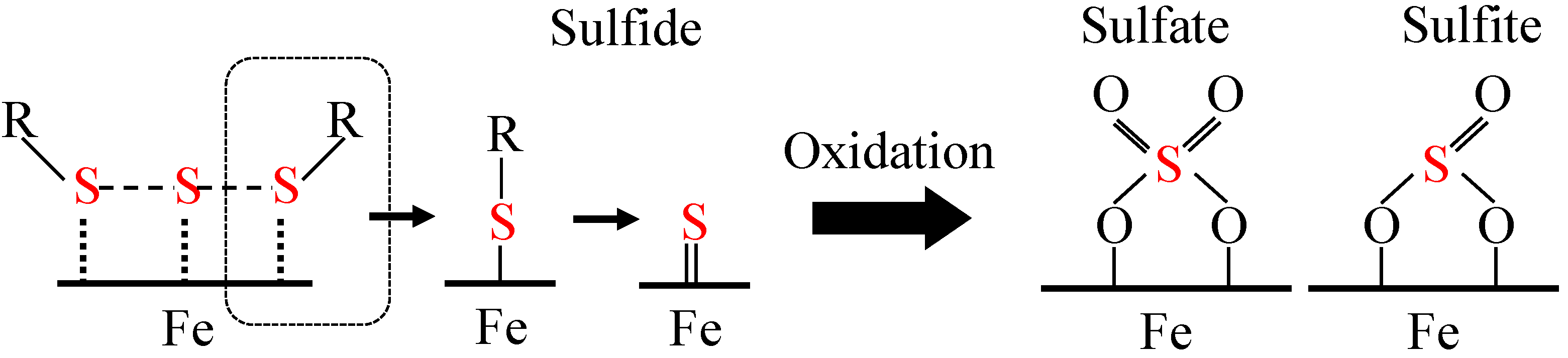 Synthesis of thioamides