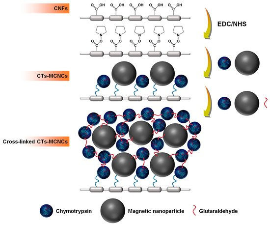 Magnetochemistry   An Open Access Journal from MDPI