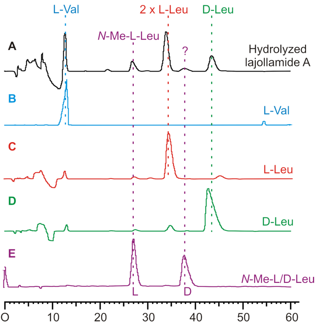amino acid racemization dating 1 amino acid racemization within the last twenty-five years, the study of amino acid racemization as a relative dating technique has attracted a great deal of attention by geologists and the.