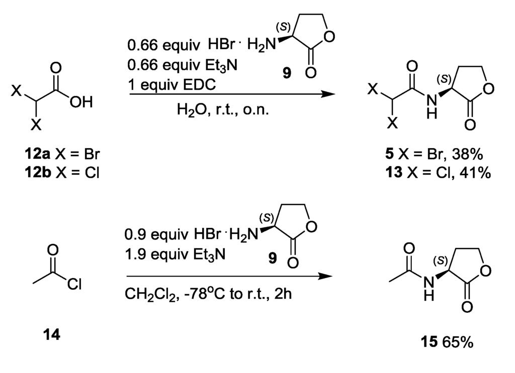 Furanones synthesis essay