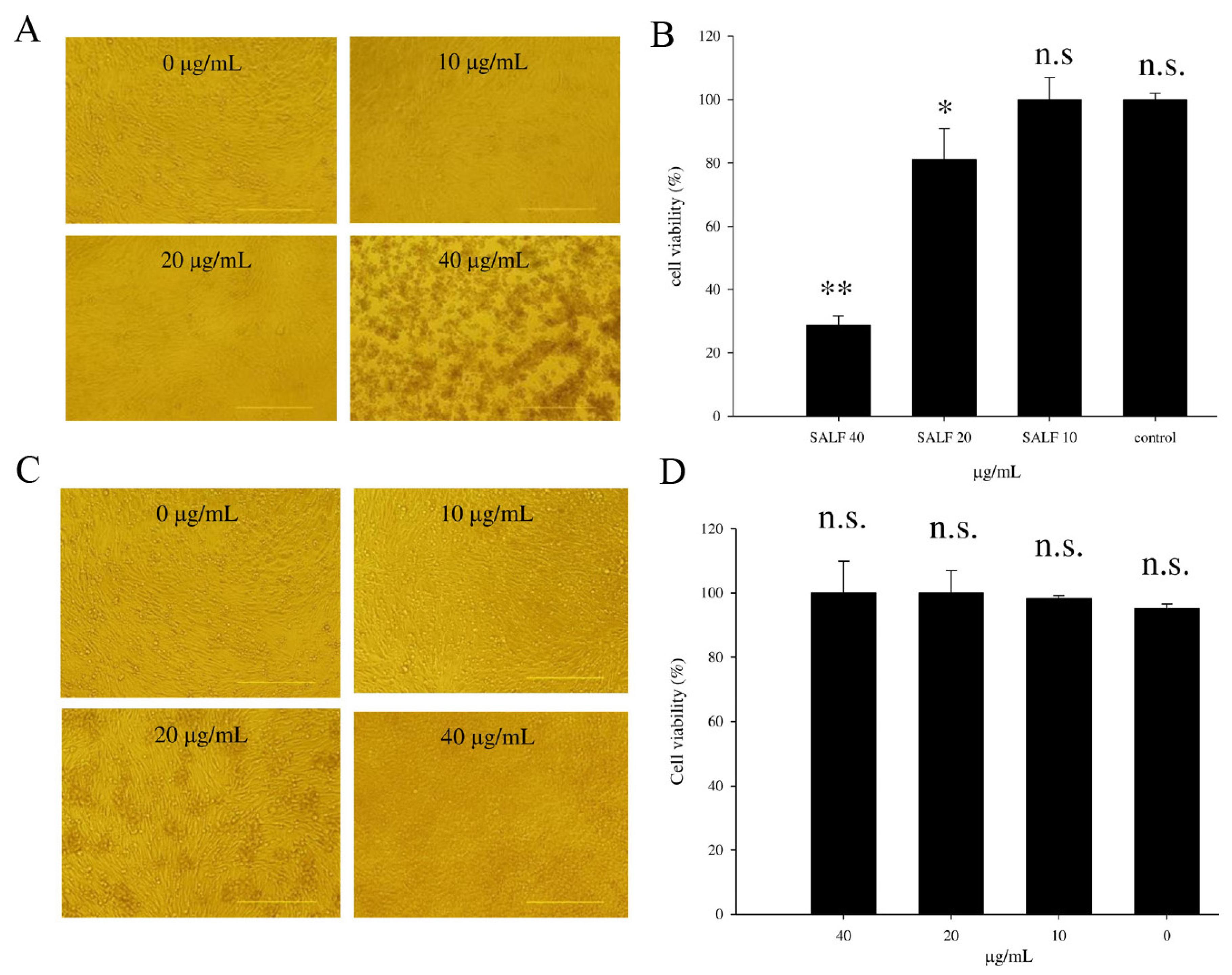 931dab4405d3 Marinedrugs 13 03241 g001. Figure 1. Cytotoxicity of MBT-2 lysate ...