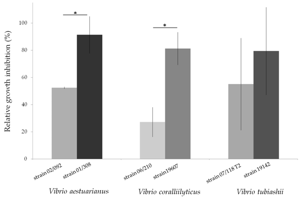 actinomycetes thesis Actinomycetes from unique unexplored natural habitats is of interest to avoid re-isolation of strains that produce known bioactive metabolites.