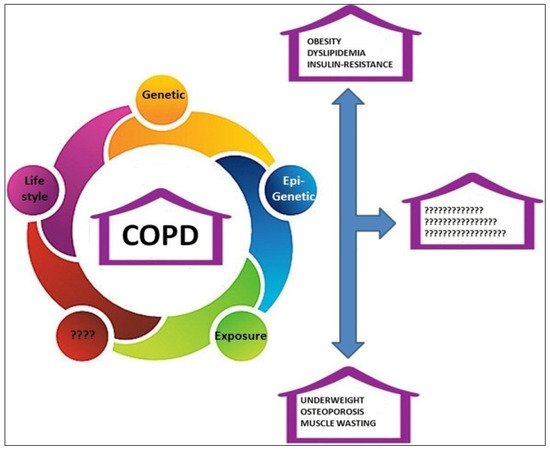 Metabolic Disorder in Chronic Obstructive Pulmonary Disease COPD Patients: Towards a Personalized Approach Using Marine Drug Derivatives