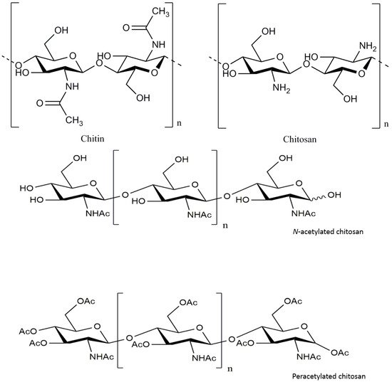 An Overview of the Protective Effects of Chitosan and Acetylated Chitosan Oligosaccharides against Neuronal Disorders