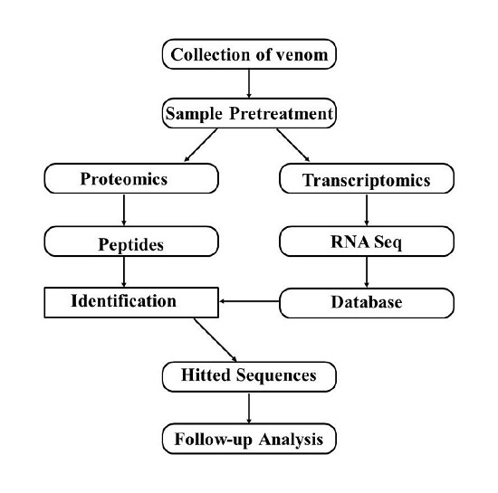research papers related bioinformatics This program is designed to help interested students find research projects related to bioinformatics across campus typically, these projects are for feel free to contact us even if you do not know exactly whether or not you want to work on a research project or know the field you wish to research in please remember that.