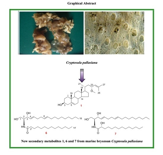 New Cytotoxic Secondary Metabolites from Marine Bryozoan Cryptosula pallasiana