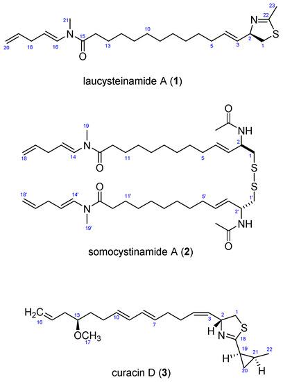 Laucysteinamide A, a Hybrid PKS-NRPS Metabolite from a Saipan Cyanobacterium, cf. Caldora penicillata