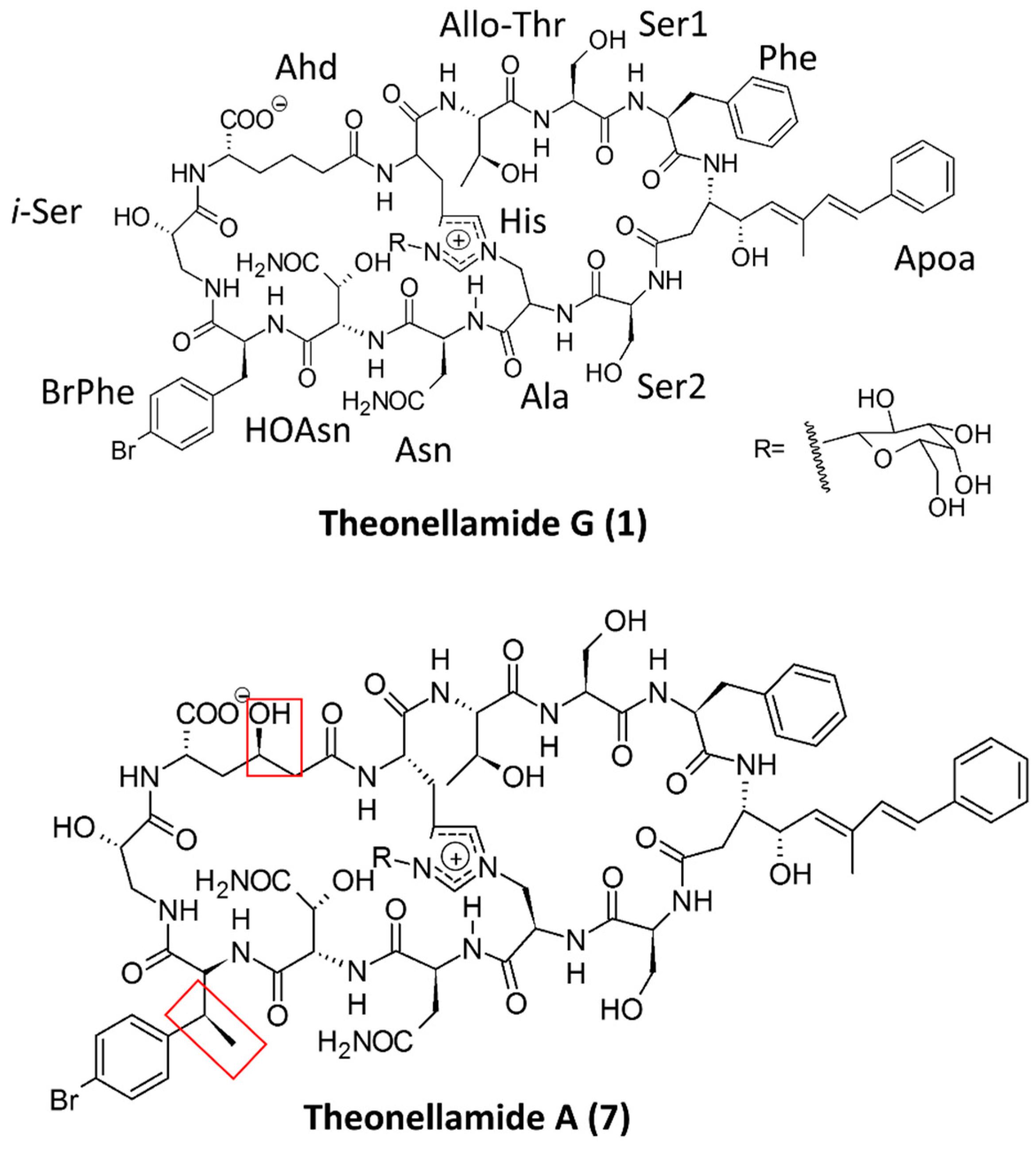 marine drugs free full text peptides peptidomimetics and Ford Bronco marinedrugs 15 00124 g006