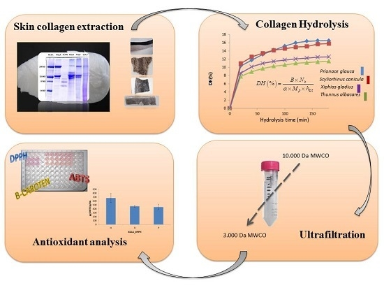 Hydrolysates of Fish Skin Collagen: An Opportunity for Valorizing Fish Industry Byproducts