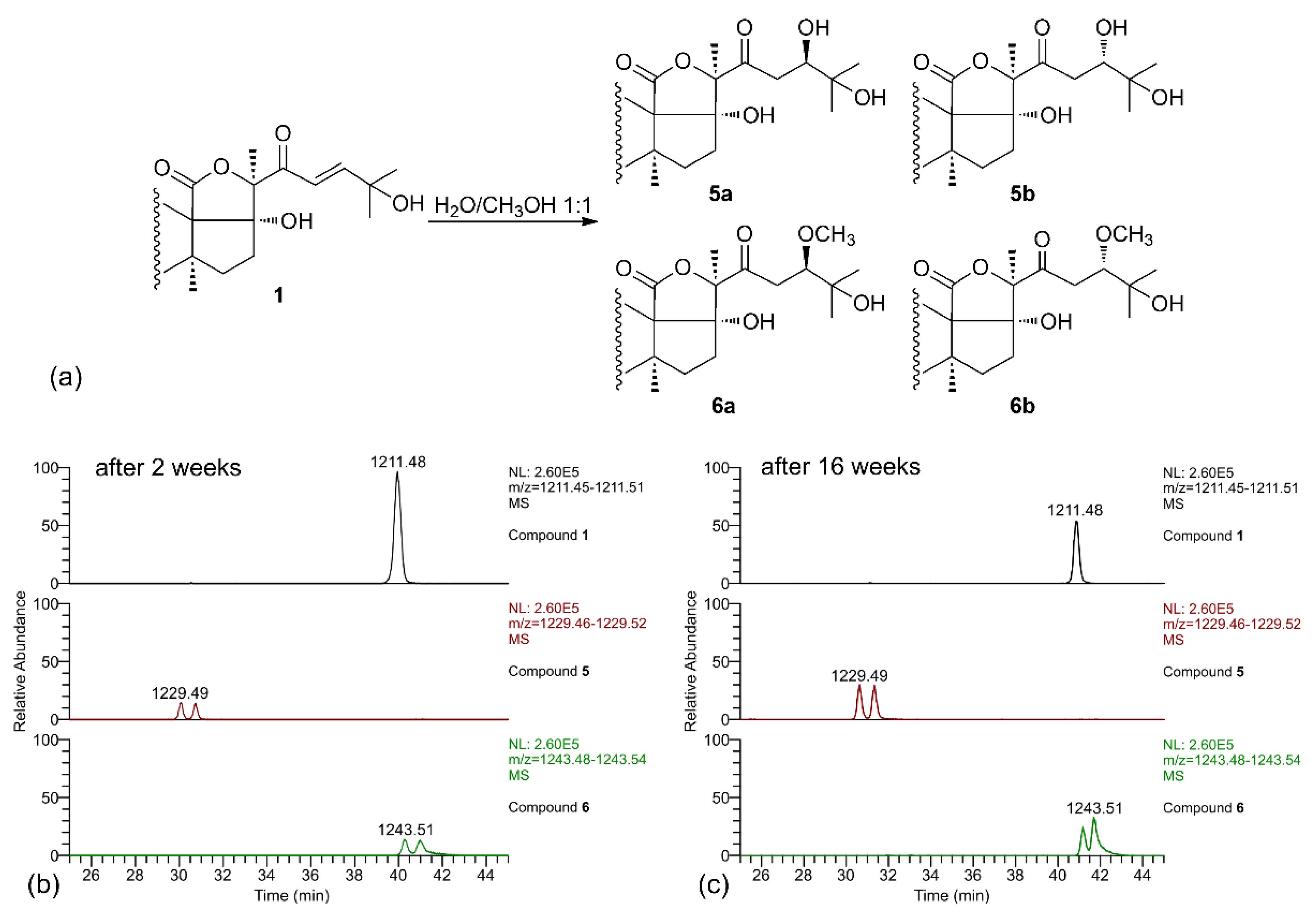 Marine Drugs | Free Full-Text | Molecular Networking-Based