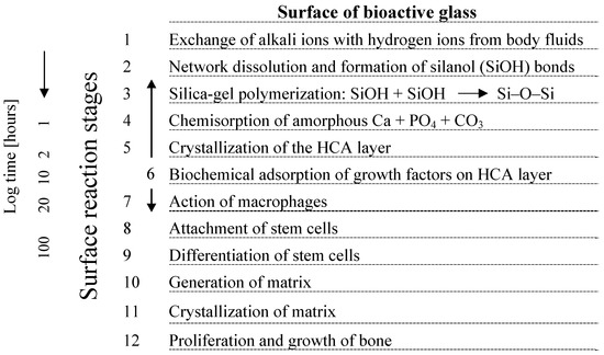 Bioactive Glass and Glass-Ceramic Scaffolds for Bone Tissue Engineering