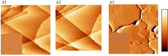 STM, SECPM, AFM and Electrochemistry on Single Crystalline Surfaces