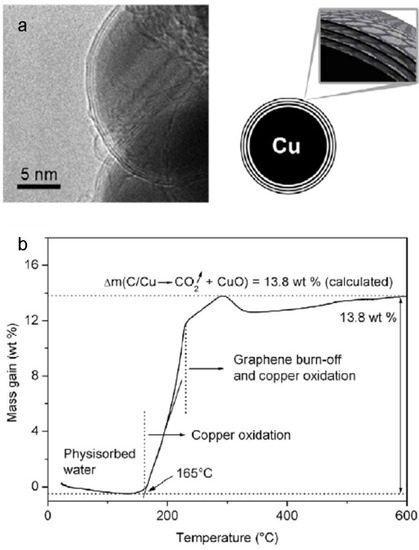 Copper Nanoparticles for Printed Electronics: Routes Towards Achieving Oxidation Stability