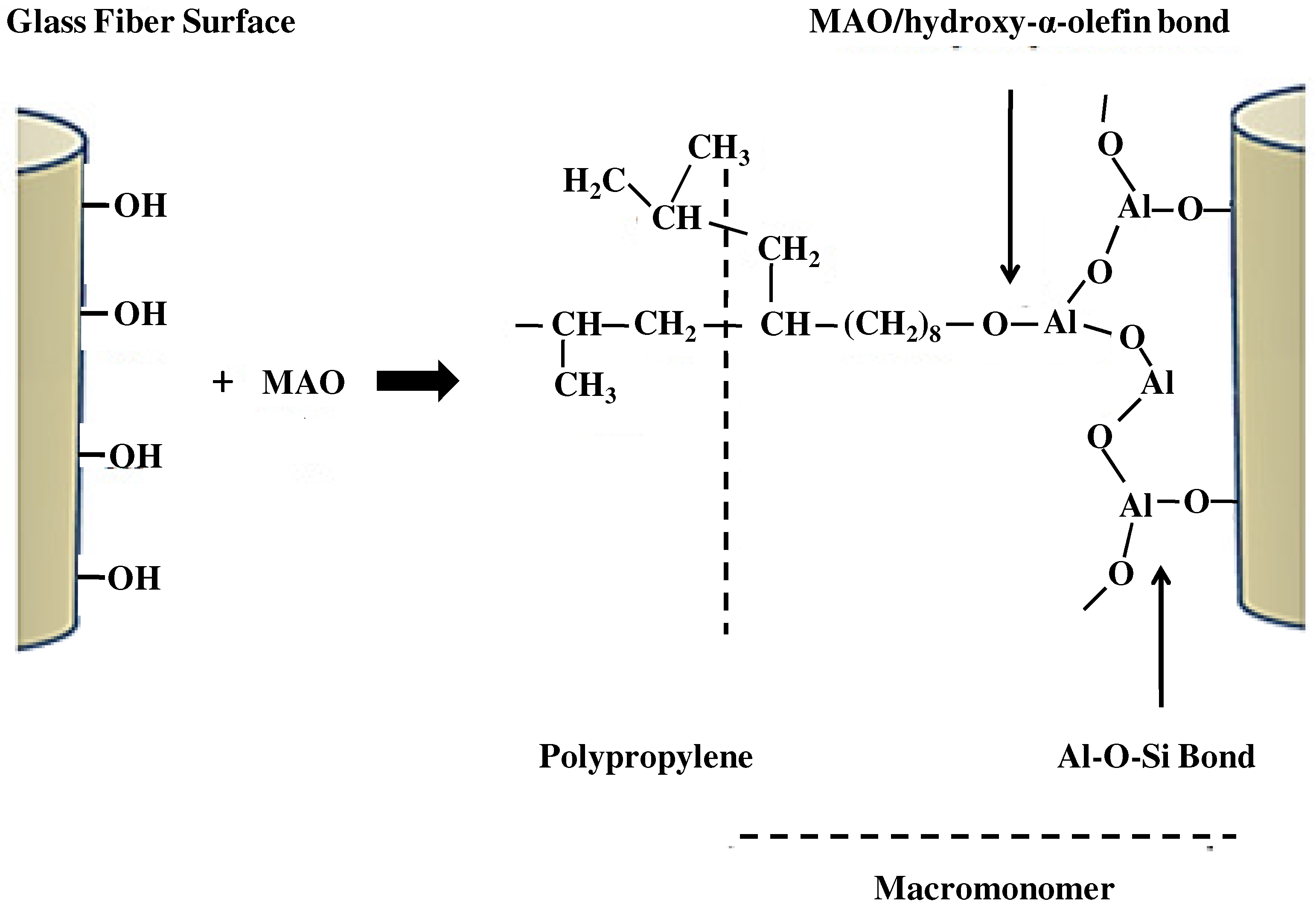 mechanical properties of polypropylene Polypropylene is a semicrystalline polymer that exhibits very attractive mechanical properties, like ductility and strength at room temperature or under moderate rates of deformation 1.