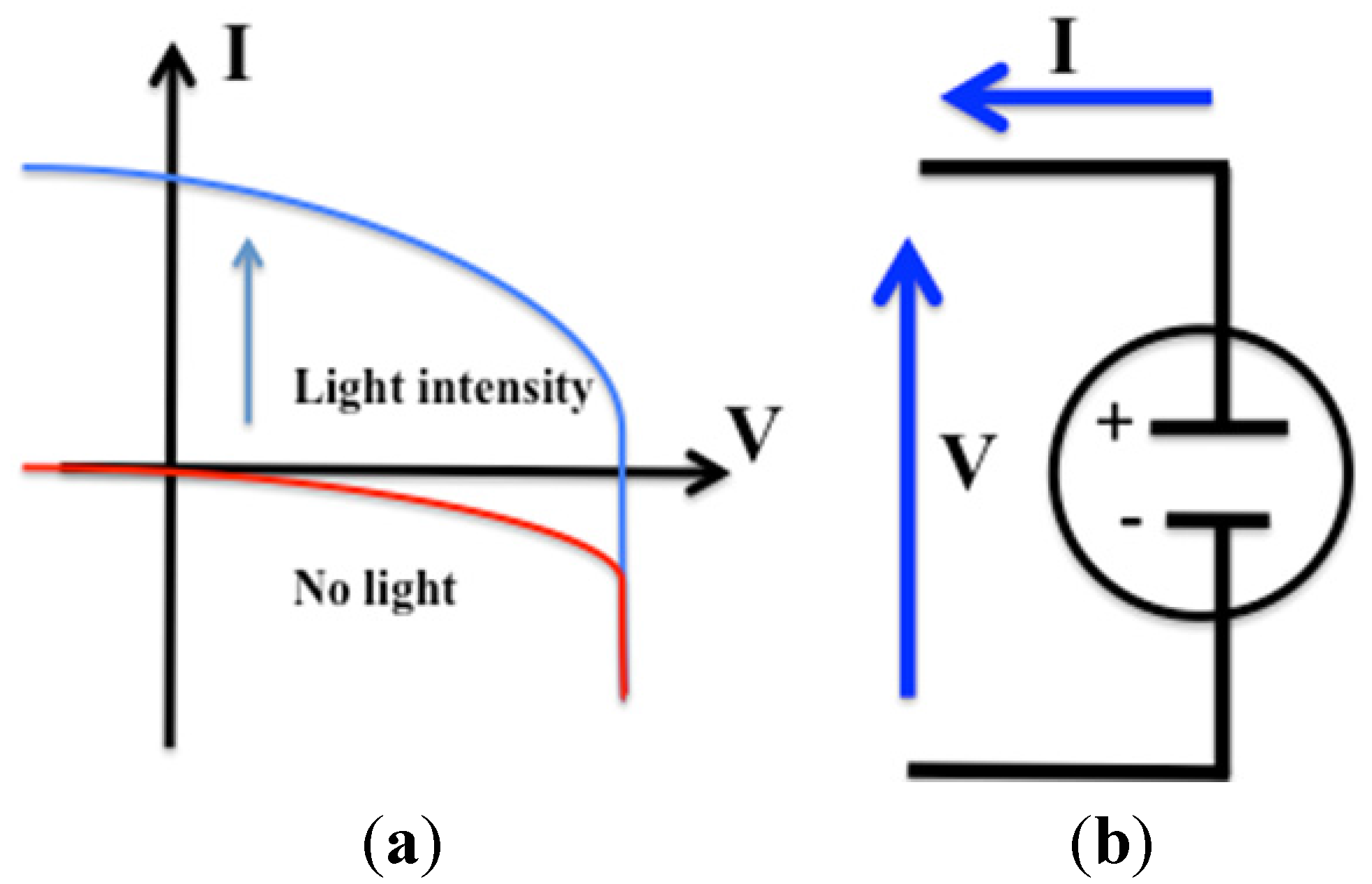 photosynthesis and semiconductor based solar cells The semiconductor properties coupled to the  like all molecule-based solar cells,.