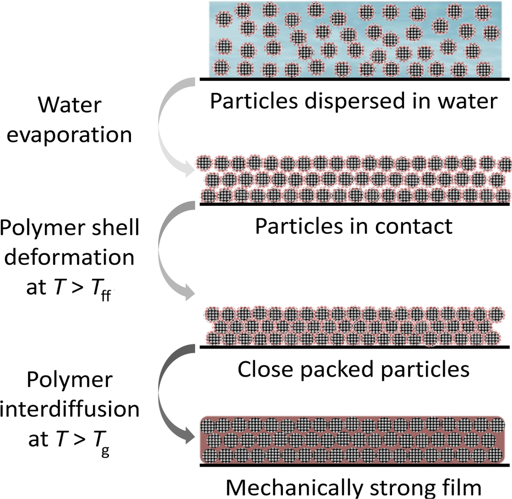 the mechanism of film formation Abstract the corrosion rate of carbon steel in co2 containing environments depends very much on the formation of protective corrosion product films the parameters affecting film formation have been studied in a large number of flow loop experiments.