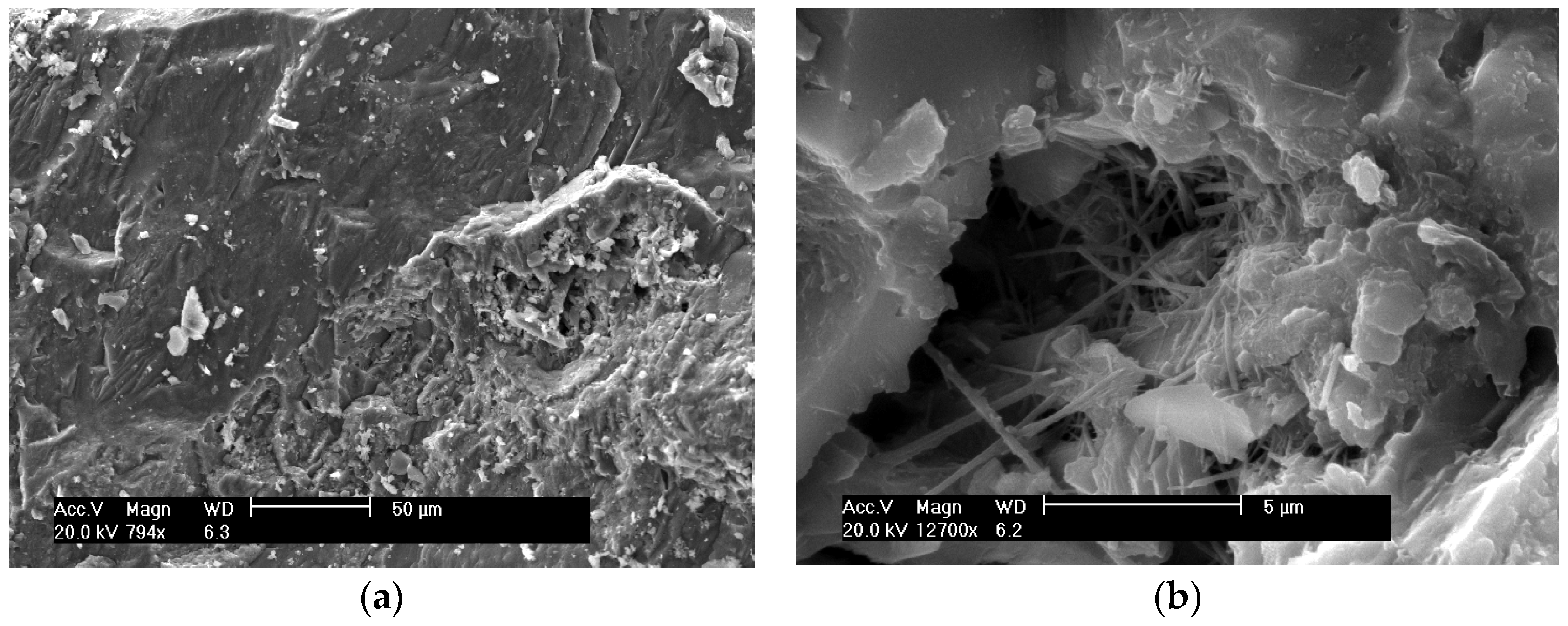 Materials | Free Full-Text | Pozzolanic Reactivity of Silica
