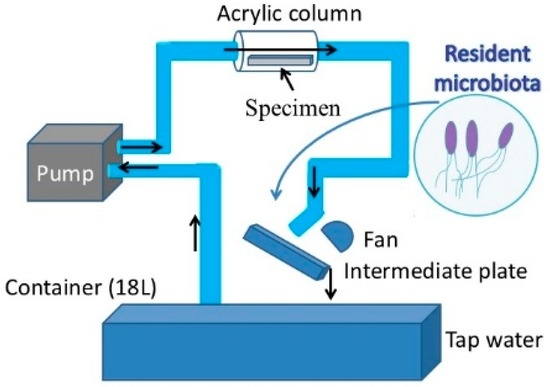 Application of a Loop-Type Laboratory Biofilm Reactor to the Evaluation of Biofilm for Some Metallic Materials and Polymers such as Urinary Stents and Catheters