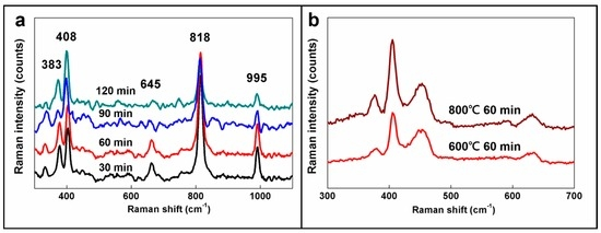 Tribological Performance of Green Lubricant Enhanced by Sulfidation IF-MoS2
