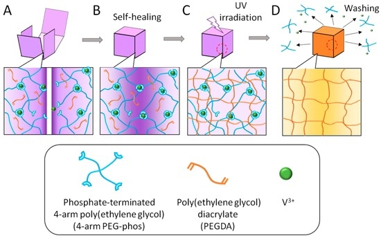 An Intriguing Method for Fabricating Arbitrarily Shaped -Matreshka- Hydrogels Using a Self-Healing Template