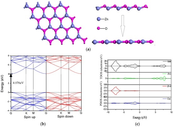 First-Principles Investigation of Phase Stability, Electronic Structure and Optical Properties of MgZnO Monolayer