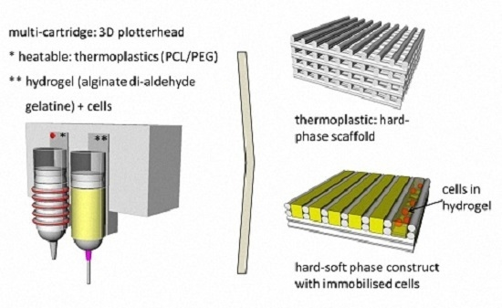 Fabrication of Cell-Loaded Two-Phase 3D Constructs for Tissue Engineering