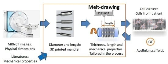 Additive Manufacturing of Patient-Customizable Scaffolds for Tubular Tissues Using the Melt-Drawing Method