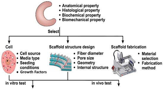 Materials | Special Issue : 3D Printing for Biomedical Engineering