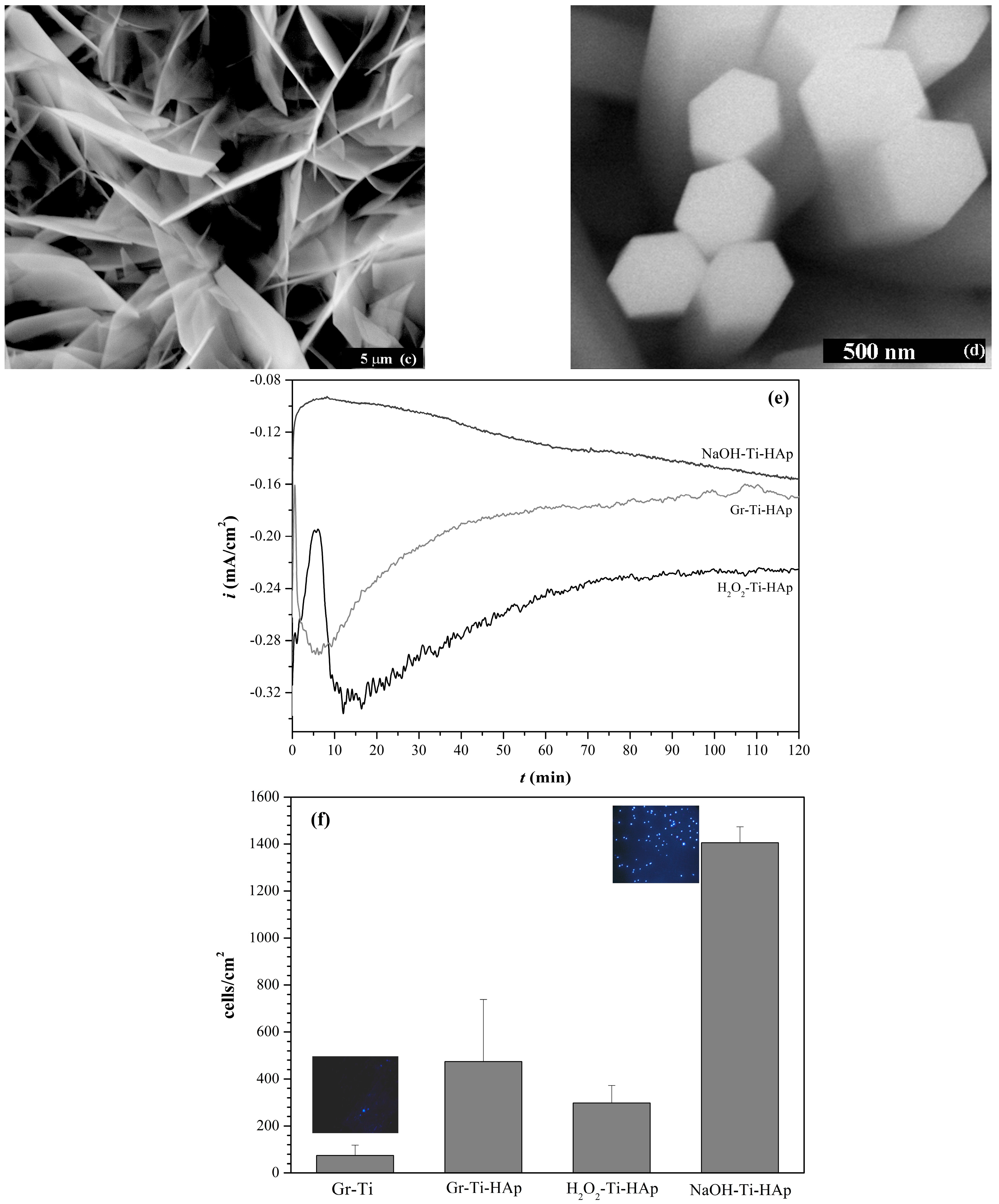 Materials | Free Full-Text | Calcium Phosphate Bioceramics