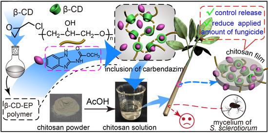 Materials   Free Full-Text   Chitosan and β-Cyclodextrin