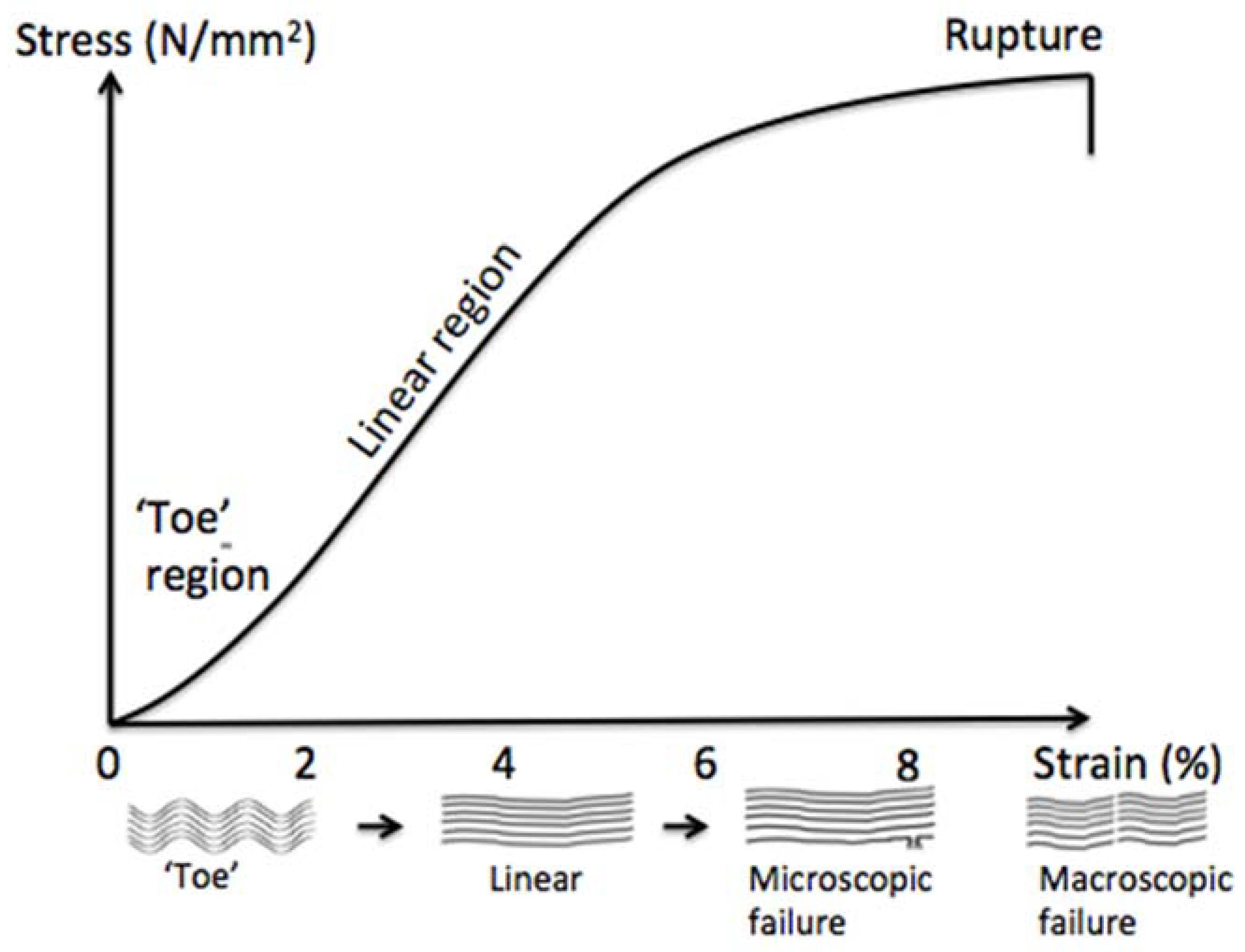 Mp rotators on spike bases of dating