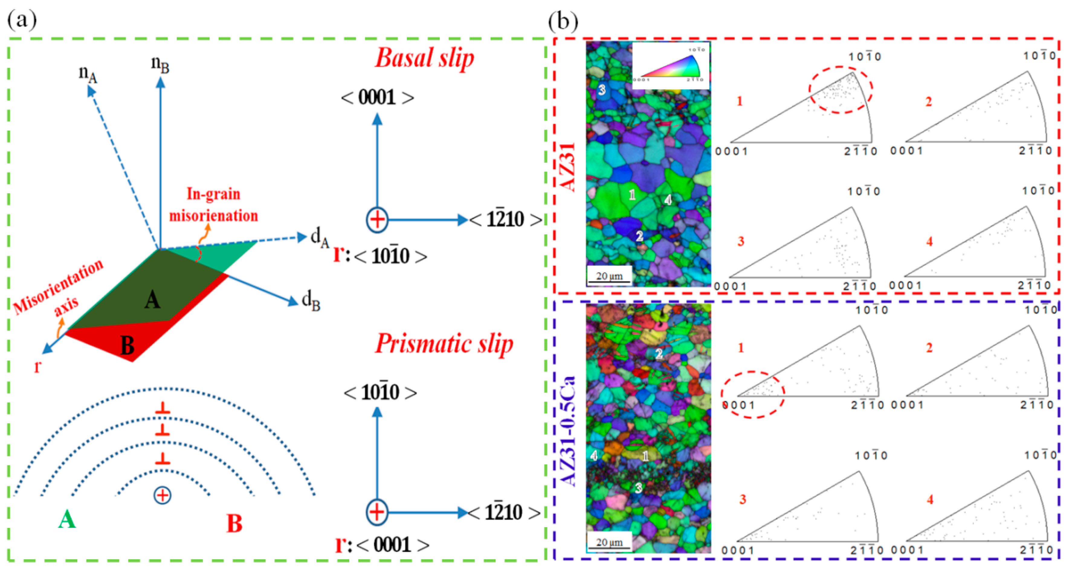 Materials | Free Full-Text | On the High Formability of AZ31