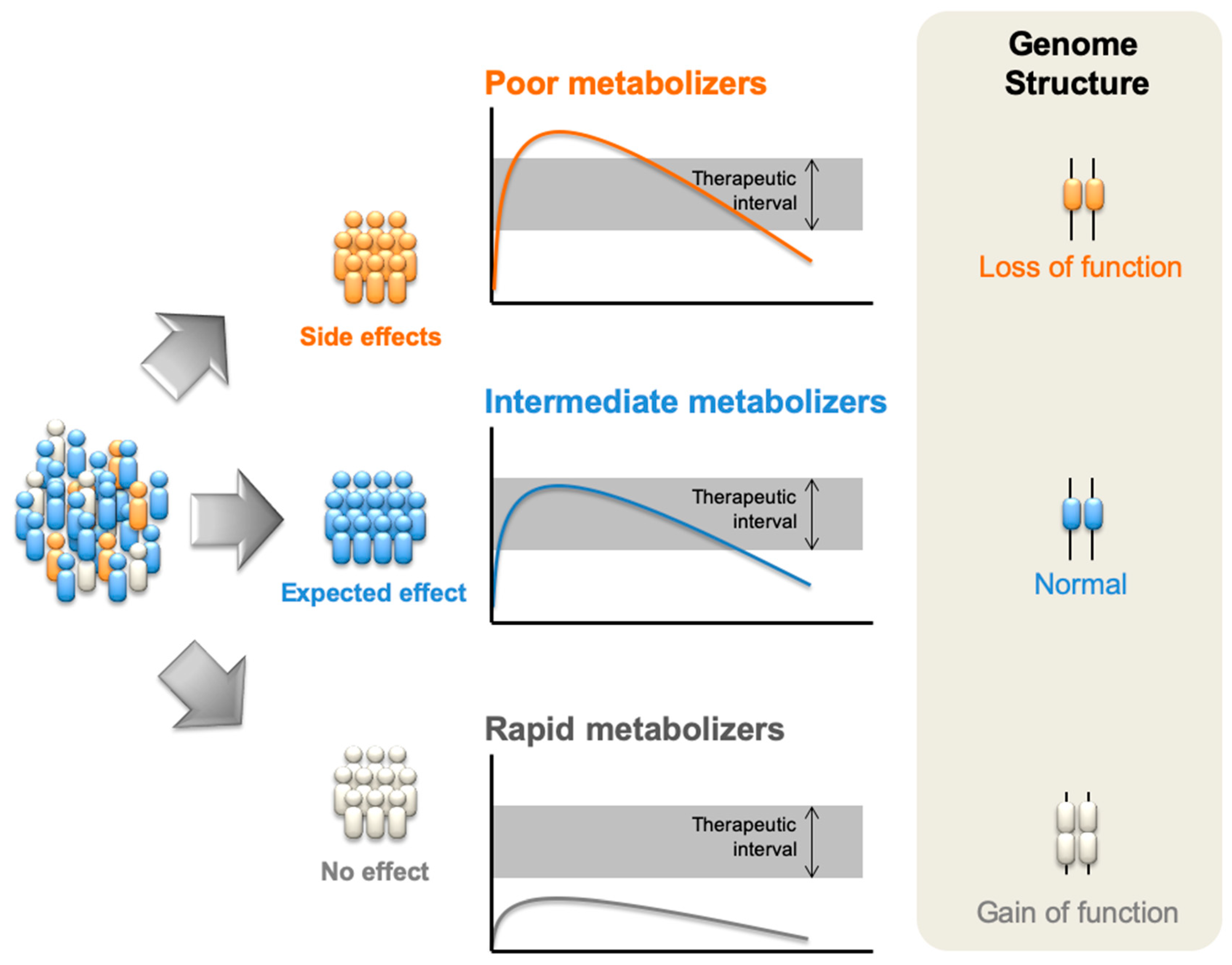 Pharmacogenomics in Clinical Therapeutics