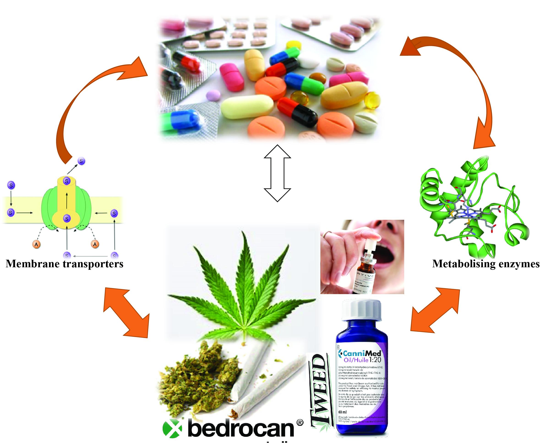 Medicines | Free Full-Text | Medicinal Cannabis—Potential