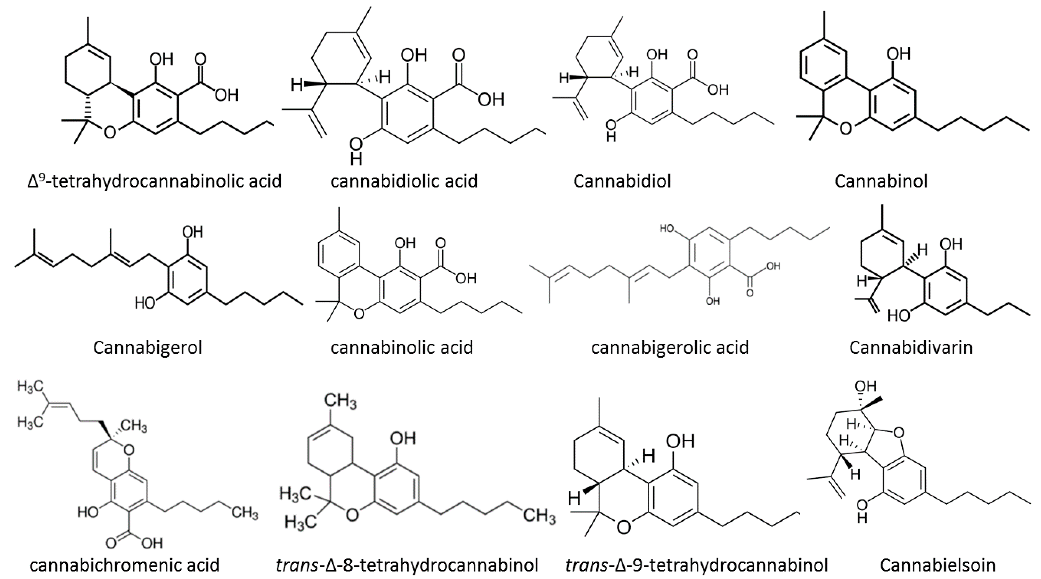 Medicines | Free Full-Text | Cannabis and Its Secondary Metabolites