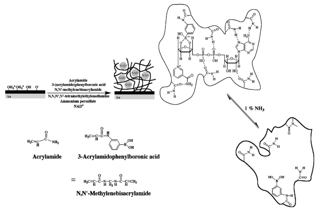 Synthesis of silver nanoparticles thesis