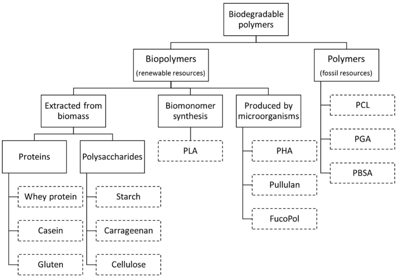 membranes free fulltext polysaccharidebased