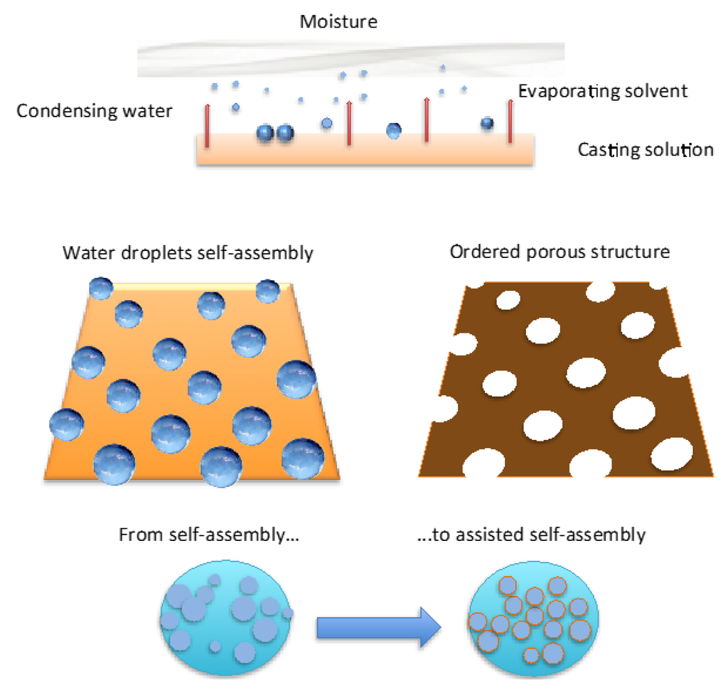 Membranes free full text controlled bulk properties of - Aerateur a membrane ...
