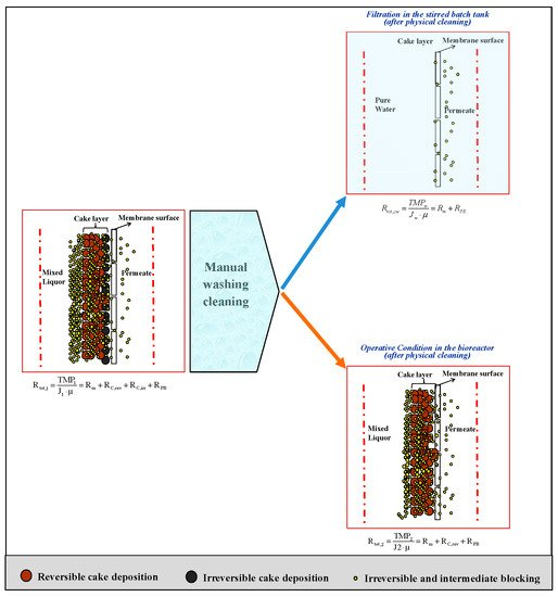 Membranes | Special Issue : Membrane Bioreactor (MBR) Technology for