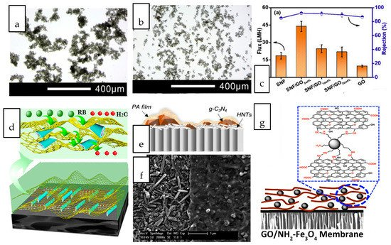 Membranes 10 00297 g005 550
