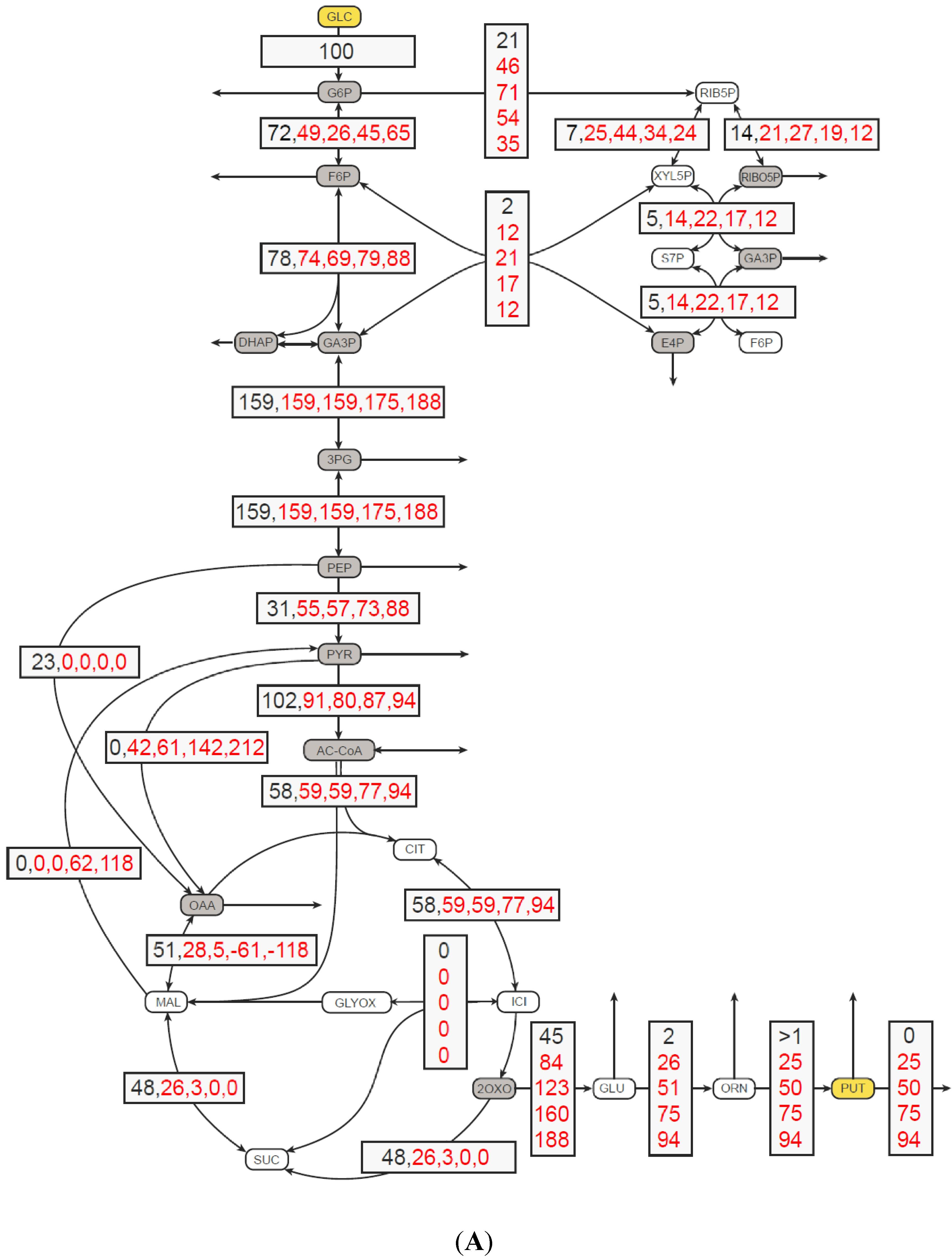 amino acid biosynthesis pathways regulation and metabolic engineering wendisch volker f